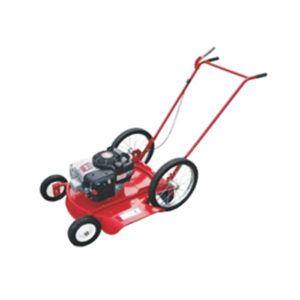 "Briggs & Stratton 6.5 HP 22"" 24"""